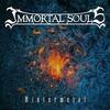 Couverture de l'album Wintermetal