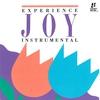 Couverture de l'album Joy: Instrumental by Interludes