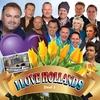 Couverture de l'album I Love Hollands - Deel 3