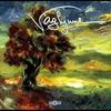 Couverture de l'album Vaghjime