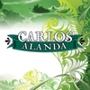 Cover of the album Alanda - Single