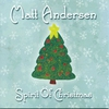 Couverture de l'album Spirit of Christmas
