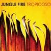 Cover of the album Tropicoso