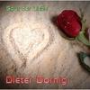 Couverture de l'album Spur der Liebe - Single