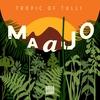 Couverture de l'album Tropics of Tulli