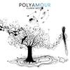 Couverture de l'album Polyamour (Bonus Track Version)