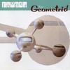 Couverture de l'album The Geometrid