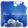 Cover of the album Pure Bliss Vocals Volume 5