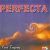 Couverture de l'album Perfecta pour toujours