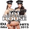 Couverture de l'album 101 Acid Hard House DJ Mix Hits 2015