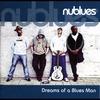 Couverture de l'album Dreams of a Blues Man