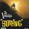 Couverture de l'album Surfing