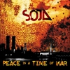 Cover of the album Peace in a Time of War