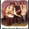 Couverture de l'album Big Tent Revival