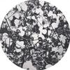 Couverture de l'album WOLFEP027 - EP