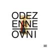 Couverture de l'album OVNI (Orchestre virtuose national incompétent) [Edition bonus Louis XIV]