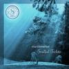 Couverture de l'album Soulful Techno
