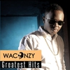 Cover of the album Waconzy: Greatest Hits