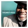 Couverture de l'album Thumb a Ride