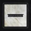 Cover of the album Thunderheist