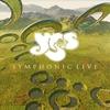 Couverture de l'album Symphonic Live