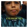 Couverture de l'album Zalim Dünya - Single