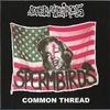 Couverture de l'album Common Thread