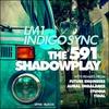 Couverture de l'album The 591 / Shadowplay Remixes