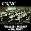 Couverture de l'album Amongst the Mischief and Malarkey