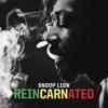 Couverture de l'album Reincarnated (Deluxe Version)
