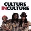 Couverture de l'album Culture in Culture
