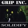 Couverture de l'album Solidify
