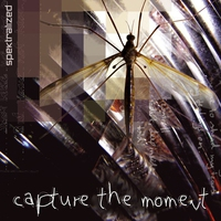 Cover of the track Capture the Moment