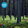 Couverture de l'album Verlass die Stadt