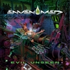 Cover of the album Evil Unseen