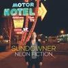Couverture de l'album Neon Fiction