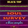 Couverture de l'album Soul Survey: A Blues Sampler