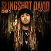 Couverture de l'album Slingshot David