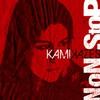 Couverture de l'album Kamikazes