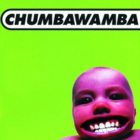 Cover of the track Tubthumper