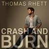 Couverture de l'album Crash and Burn - Single