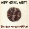 Cover of the album Thunder and Consolation