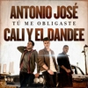 Cover of the track Tú Me Obligaste 135