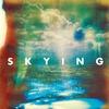 Cover of the album Skying (Bonus Track Version)