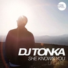 Couverture de l'album She Knows You (Update) - EP