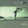 Couverture de l'album Sounds of Spa: Eternity