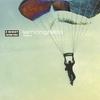 Couverture de l'album Skydiver