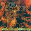 Couverture de l'album Dub Fire Blazing