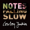 Couverture de l'album Notes Falling Slow
