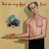 Couverture de l'album Tout Est Magnifique